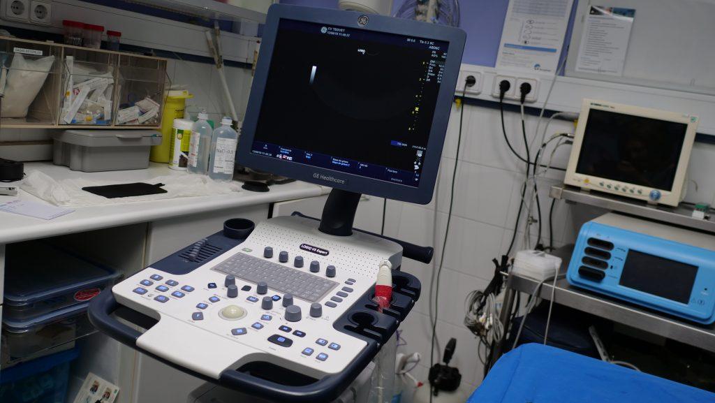 clinica Veterinaria Teovet - Consulta Ecografía