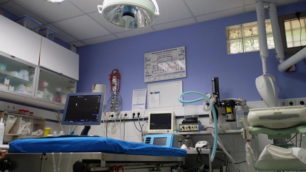 clinica Veterinaria Teovet - Quirófano